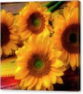 Gorgeous Lovely Sunflowers Canvas Print