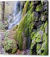 Gorman Falls At Colorado State Park II - San Saba Texas Hill Country Canvas Print