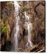 Gorman Falls Canvas Print