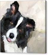 Got any sheep? Canvas Print