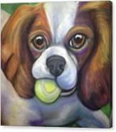 Got Balls? King Charles Canvas Print