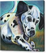 Gotballs4pets? Dalmatian Canvas Print