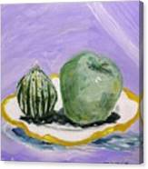 Gourd And Green Apple On Haviland Canvas Print