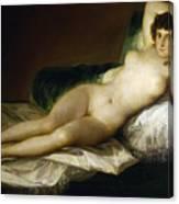 Goya: Nude Maja, C1797 Canvas Print