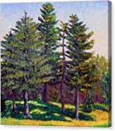 Gp 10-12 Canvas Print