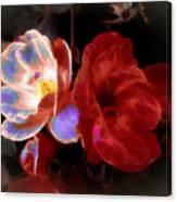 Graceful Glow Canvas Print