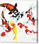 Graceful Koi Canvas Print