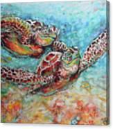 Sea Turtle Buddies Canvas Print
