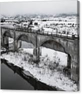 Graceful Waterways Canvas Print