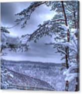 Gracious Winter Canvas Print