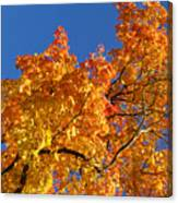 Gradient Autumn Tree Canvas Print