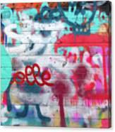 Graffiti 1 Canvas Print
