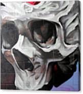 Graffiti 23 Canvas Print