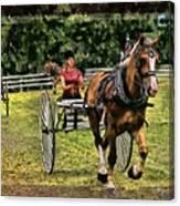 Grahamsville Ny Fair Canvas Print