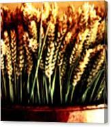 Grain In Copper Pot Canvas Print
