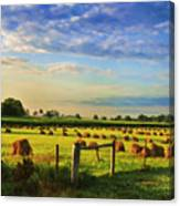 Grain In The Field Canvas Print