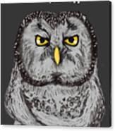 Grammar Owl Is Judging You Canvas Print