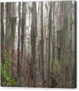Grand Bay Canvas Print