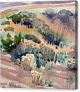 Grand Canyon Flora Study 77 Canvas Print