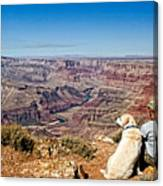 Grand Canyon Girl And Dog Canvas Print
