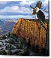 Grand Canyon Lookout Canvas Print