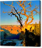 Grand Canyon National Park Winter Sunrise On South Rim Canvas Print