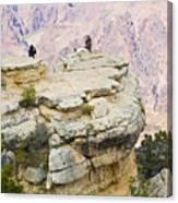 Grand Canyon Photo Op Canvas Print