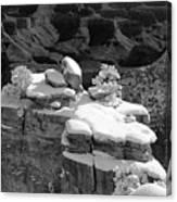 Grand Canyon Snow Black And White Photo Canvas Print