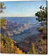 Grand Canyon View With Trees Canvas Print