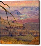 Grand Canyon Vista Canvas Print