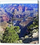 Grand Canyon14 Canvas Print