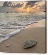 Grand Cayman Beach Coral At Sunset Canvas Print
