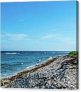 Grand Cayman Island Caribbean Sea 2 Canvas Print