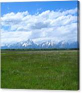 Grand Tetons Meadow Canvas Print