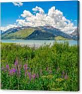 Grand Tetons Wildflowers Canvas Print