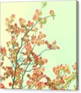 Grandma's Pink Dogwood Canvas Print