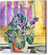 Grandmas' Violets Canvas Print