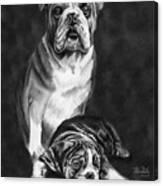 Grandson Of Sampson Canvas Print