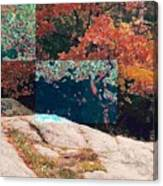 Granite Outcrop And Fall Leaves Aep2 Canvas Print