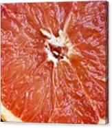 Grapefruit Half Canvas Print