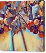 Grapevine Art Canvas Print