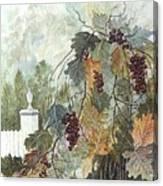 Grapevine Topiary Canvas Print