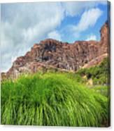 Grass Along John Day River In Central Oregon Canvas Print