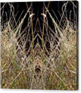 Grass Chief Canvas Print