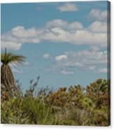 Grass Tree Landscape Canvas Print