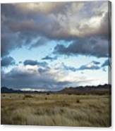 Grasslands Near Portal Canvas Print