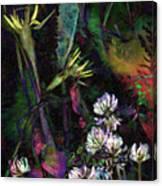 Grasslands Series No. 7 Canvas Print