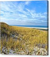 Grassy Dunes Canvas Print