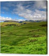 Grassy Meadow South Iceland Canvas Print