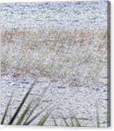 Grassy Waters Canvas Print